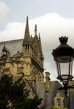 Notre Damae katedra czerep Obraz Royalty Free