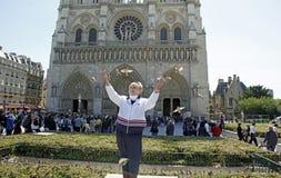 Notre Damae katedry ptaki Obraz Royalty Free