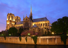 Notre Damae, Paryż Zdjęcia Stock