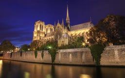 Notre Damae, Paryż nocą Zdjęcia Royalty Free