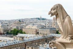 Notre Dame一个象鸟的面貌古怪的人  库存图片