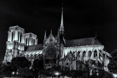 Notre Dame在晚上 免版税库存照片