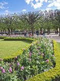 Notre Dame墙壁的公园  免版税库存照片