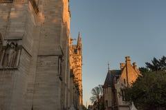 Notre Dame大教堂的侧视图在巴黎 免版税库存照片