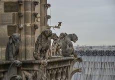 Notre Dame大教堂的虚构物  免版税库存照片