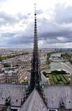 Notre Dame大教堂,巴黎,法国 尖顶和传道者、塞纳河和都市风景从塔观点 免版税库存照片