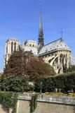 Notre Dame河塞纳河巴黎垂直 免版税库存照片