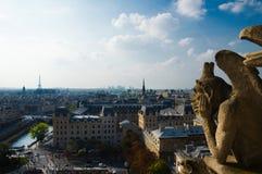 Notre Dame的面貌古怪的人 库存图片