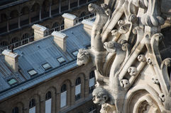 Notre Dame的面貌古怪的人 免版税图库摄影