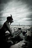 Notre Dame石面貌古怪的人  免版税库存图片