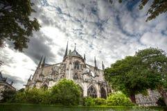 Notre Dame石面貌古怪的人  库存照片