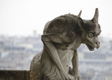 Notre Dame面貌古怪的人 库存图片