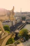 Notre Dame,巴黎面貌古怪的人  免版税库存照片