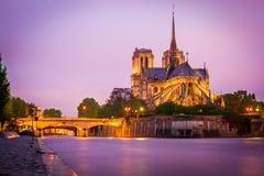 Notre Dame,巴黎 库存照片
