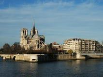 Notre Dame & Île de la Cité i Paris Arkivfoton