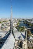 Πανόραμα του Παρισιού από τη Notre Dame στοκ εικόνες με δικαίωμα ελεύθερης χρήσης