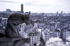 Notre Dame του Παρισιού, Gargoyle διασημότερο όλων των χιμαιρών Στοκ Εικόνες