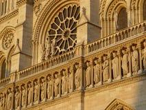notre dame собора Стоковые Фото