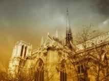 notre dame собора Стоковое Фото