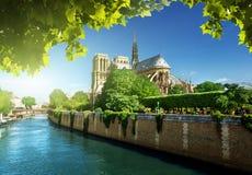 Notre Dame巴黎,法国 库存照片