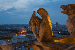 Notre Dame Fotografia de Stock