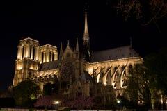 Notre Dame alla notte Immagine Stock Libera da Diritti