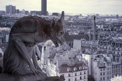 Notre Dame av Paris, vattenkastare mest berömda allra skenbilder Arkivfoton