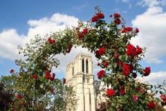 Notre Dame avec des roses Photographie stock