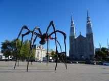 Notre Dame Basilica de Ottawa com o ` da mamã do ` da aranha Imagens de Stock