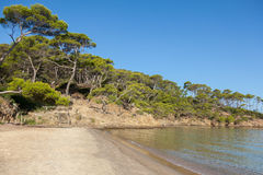 Notre Dame beach in Porquerolles island in France Royalty Free Stock Image