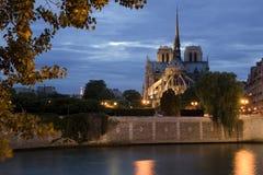 Notre Dame bis zum Nacht Lizenzfreie Stockbilder