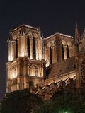Notre Dame Cathedral Imagem de Stock Royalty Free