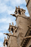 Notre Dame Cathedral, architectural details , Paris . Royalty Free Stock Photography