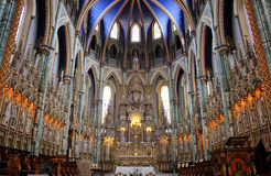 Free Notre-Dame Cathedral Basilica, Ottawa Royalty Free Stock Images - 20196909