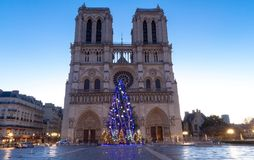 The Notre Dame Cathedral with Christmas tree - Paris, France Royalty Free Stock Image