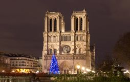 The Notre Dame Cathedral with Christmas tree - Paris, France Stock Photos