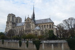 The Notre Dame Cathedral. On the Cite island Royalty Free Stock Photos