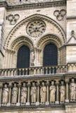 Notre Dame Cathedral das Fragment Stockfotos