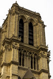 Notre Dame Cathedral das Fragment Stockfoto