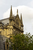 Notre Dame Cathedral the fragment Royalty Free Stock Photo