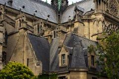 Notre Dame Cathedral fragmentet Royaltyfri Foto