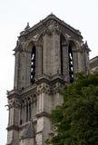 Notre Dame Cathedral fragmentet Arkivfoton