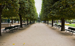 Notre Dame Cathedral Gardens Stock Images