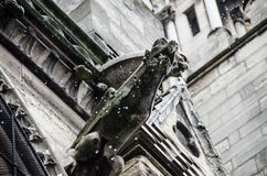 Notre Dame Cathedral Gargoyle in Rain. Notre Dame Cathedral gargoyle sprinkles rain down onto the streets below Stock Photography