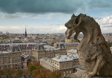 Notre Dame Cathedral Gargoyle in Storm Royalty Free Stock Images