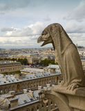 Notre Dame Cathedral Gargoyle Watching City Royalty Free Stock Photos