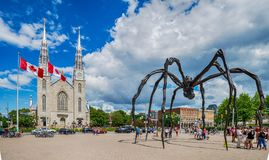 Notre Dame cathedral and Maman spider scuplture in Ottawa, Canad. OTTAWA, ONTARIO - July 08, 2017: Notre Dame cathedral and Maman spider scuplture in Ottawa Royalty Free Stock Photography