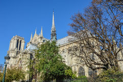 Notre Dame cathedral next to the river of Paris with boats and buildings summertime. France Royalty Free Stock Photography