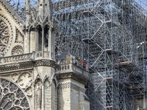 Notre Dame Cathedral in Parijs na de Brand stock afbeelding