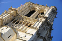 Notre Dame cathedral of Paris details Royalty Free Stock Photos